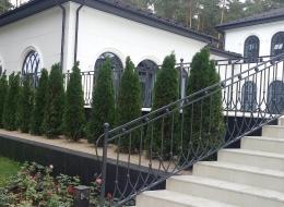 Кованые перила для крыльца на улице Воронеж №80